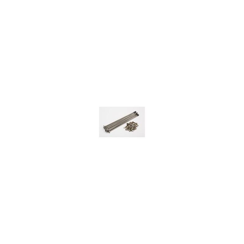 Brompton Jeu de rayon avant pour roue Hub Shimano jante double paroie (QSPOK-132-PG-14G)