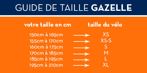 guide taille gazelle